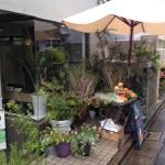 シトシト・・雨のマルシェ