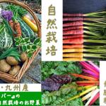 【次回は8月15日(土)!!】〜自然栽培の野菜マルシェ@代官山〜