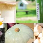 【今週開催!!】京都の自然栽培の野菜マルシェ@TOKYO