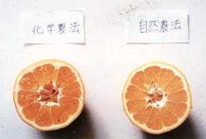 1-2_photo03