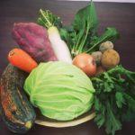 [今までの不摂生を『リセット』!]『ファイトケミカルスープ』《2月14日、田園調布へGO!》【京都産 自然栽培の野菜マルシェ】