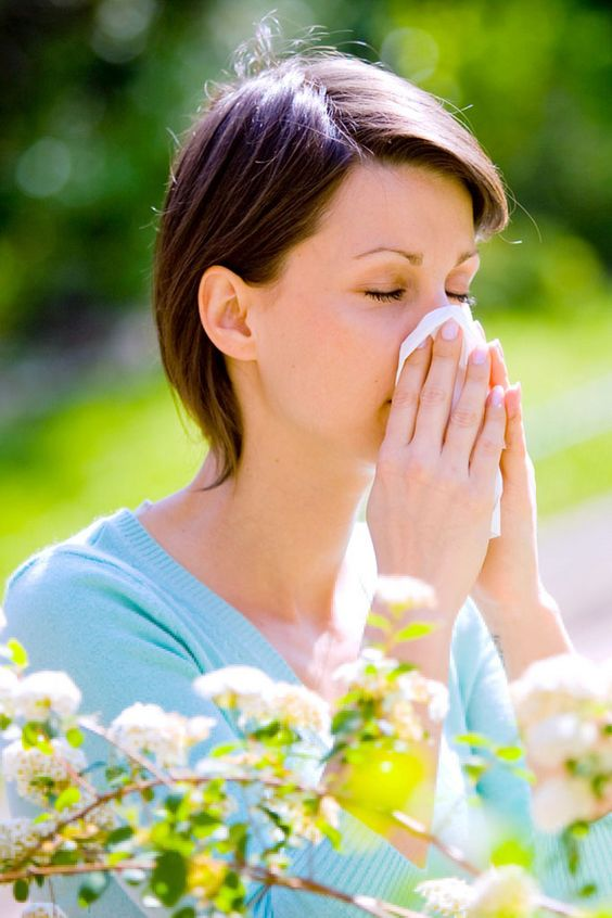 Mandatory Credit: Photo by Garo/Phanie/REX_Shutterstock (766331ad) Model Released - Woman with hayfever sneezing. Various - 2008