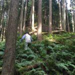 【『松茸山』で山登り。《『乾燥』を感じたら『即、保湿』!!》『季節の変わり目キット』発売中!】