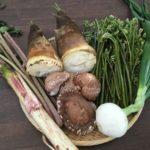 山菜の適正量は『1日小鉢1個』《5月16日、田園調布へGO!》【京都産 自然栽培の野菜マルシェ】