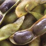 次回は10月17日。《『丹波の黒枝豆』持参します☆》【京都産 自然栽培の野菜マルシェ】