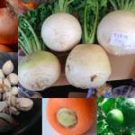【限定 1名様 「ワケあり野菜&タマゴセット」】