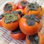 【昔ながらの柿】