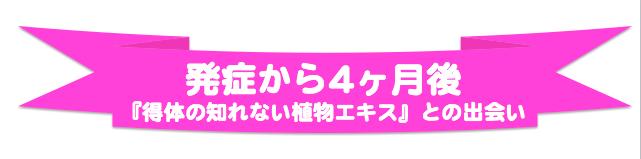 スクリーンショット 2015-12-21 18.53.26