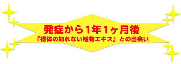 スクリーンショット 2015-12-21 19.04.51