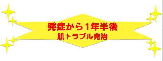 スクリーンショット 2015-12-21 19.13.59