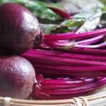 《今年もやります!》1月のマルシェは20日!【京都産 自然栽培の野菜マルシェ】