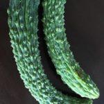 【東京のお野菜事情。】京都 丹波産 無農薬の野菜